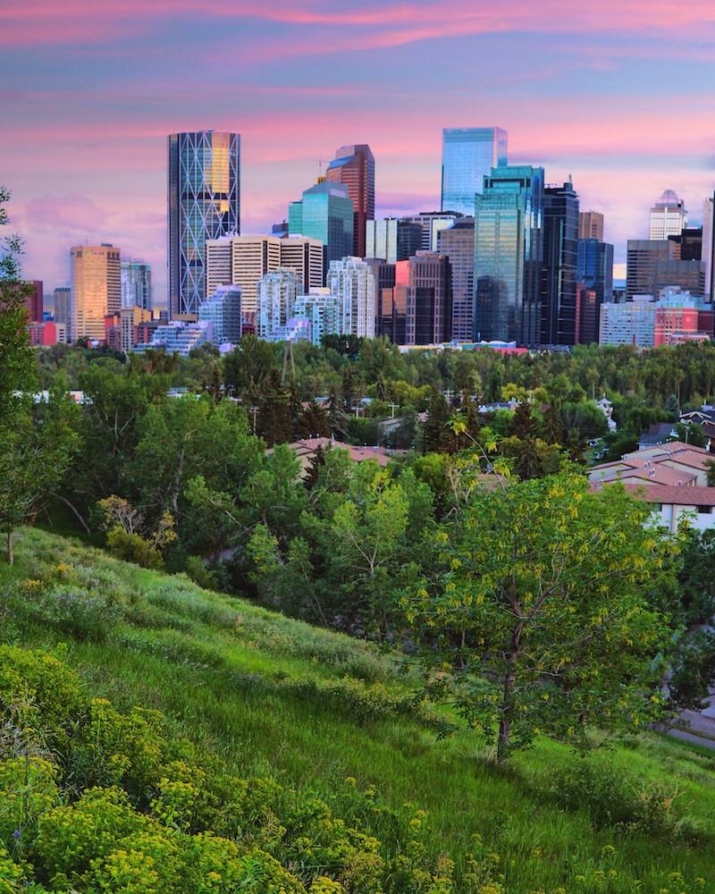 Wrongful Dismissal Lawyer Calgary